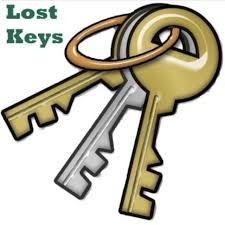 Found Keys in Ledgeview Park