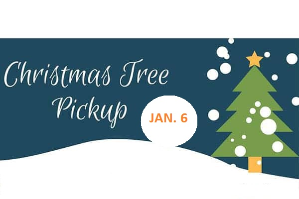 Christmas Tree Curbside Collection – January 6th by 6:00 AM